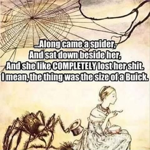 spider buick
